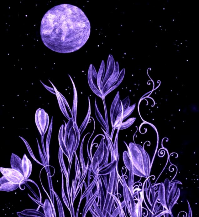 moonlight_garden_by_rebeccatripp-d2szd88