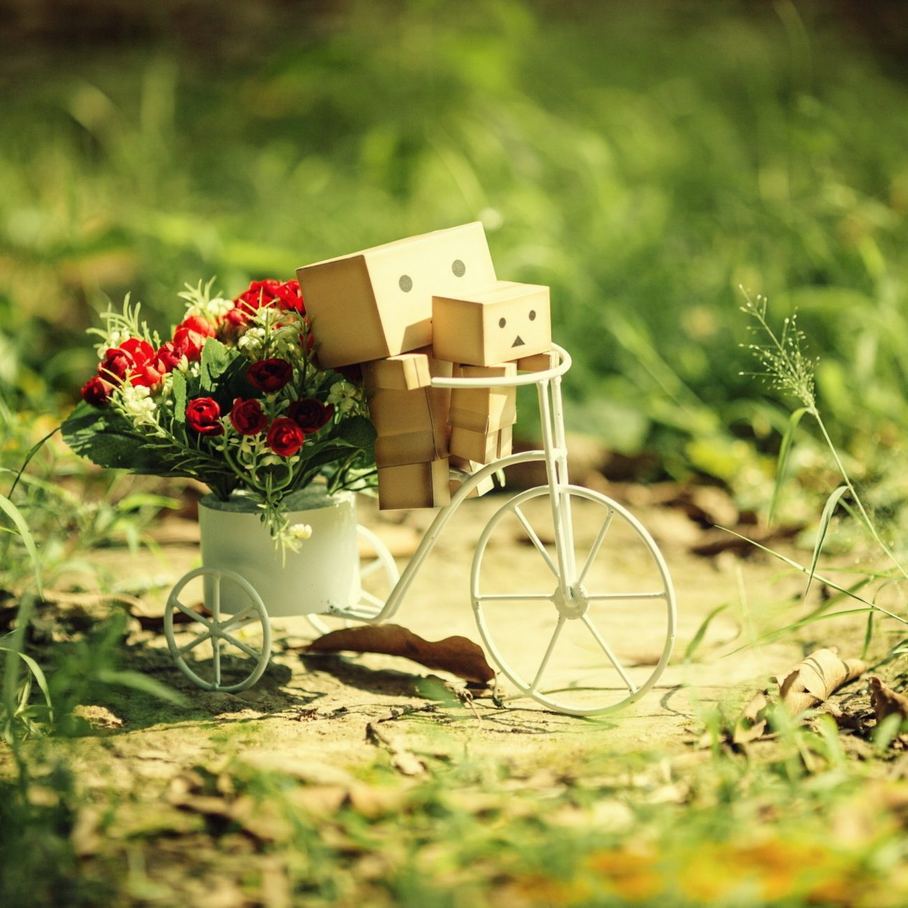 danboard_bicycle_cardboard_robots_flowers_grass_64643_2048x2048